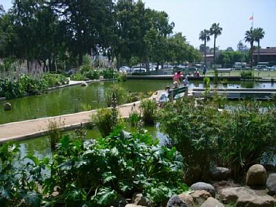 Douglas Park Tai Chi Santa Monica