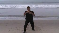 Avoid, Keep In Touch, and Win In Tai Chi Chuan